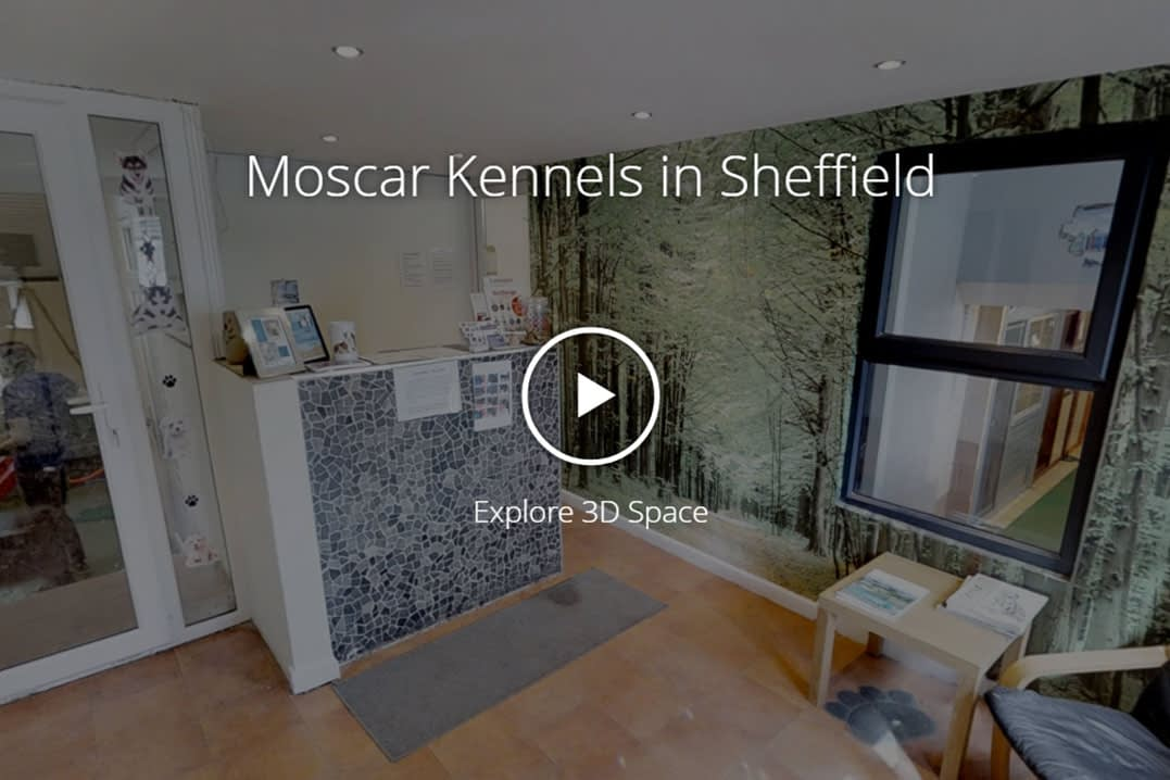 Moscar Kennels, Sheffield